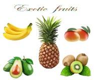 Reeks exotische vruchten op een witte achtergrond stock illustratie