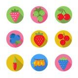 Reeks fruitpictogrammen Stock Afbeelding