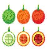 Reeks Gac-Voordelen van de Fruitgezondheid Royalty-vrije Stock Foto