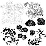Reeks geïsoleerde bloemenelementen voor ontwerp Stock Foto's
