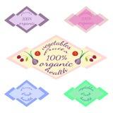 Reeks geïsoleerde gekleurde malplaatjes met tekst - organische vruchten en groenten vector illustratie