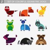 Reeks geometrische kleurrijke honden Royalty-vrije Stock Afbeelding
