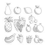 Reeks geschetste hand getrokken lineaire friuts en bessen: appel, ananas, druif, citroen, sinaasappel, banaan, peer, kers, aardbe Stock Afbeelding