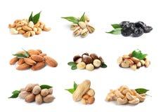 Reeks gezond gedroogd fruit en smakelijke noten op wit royalty-vrije stock foto's