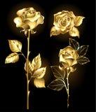 Reeks gouden rozen royalty-vrije illustratie