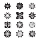 Reeks grafische bloemen Stock Afbeelding