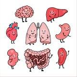 Reeks grappige menselijke organen met leuke het glimlachen gezichten Stock Afbeelding