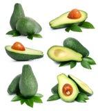 Reeks groene avocadovruchten met blad stock foto's