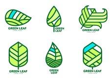 Reeks groene malplaatjes van het bladembleem, vectorillustratie stock illustratie