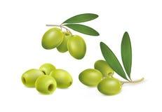 Reeks groene olijven op witte achtergrond royalty-vrije stock afbeeldingen