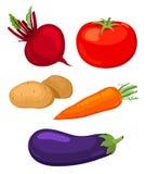 Reeks groenten. Stock Foto's