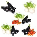 Reeks groenten met geïsoleerde tomaat, aubergine en venkel Royalty-vrije Stock Foto's