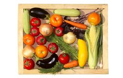 Reeks groenten Plantaardig assortiment Stock Foto's