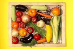 Reeks groenten Plantaardig assortiment Royalty-vrije Stock Foto