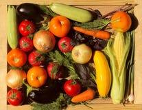 Reeks groenten Plantaardig assortiment Stock Afbeelding