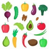Reeks groenten, wortels en noten Paprika, avocado, komkommer, broccoli, wortel, aubergine, okkernoot, kokosnoot, tomaat, amandel royalty-vrije illustratie
