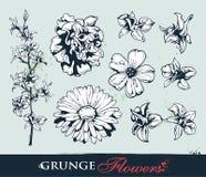Reeks grungy bloemen royalty-vrije illustratie