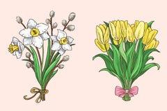 Reeks hand getrokken de lenteboeketten Royalty-vrije Stock Foto's