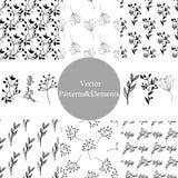 Reeks hand getrokken naadloze patronen en bladelementen Royalty-vrije Stock Afbeelding