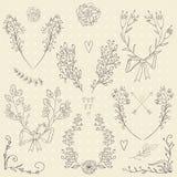 Reeks hand getrokken symmetrische bloemen grafische ontwerpelementen Stock Foto's