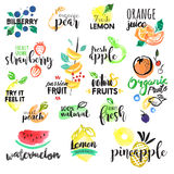 Reeks hand getrokken waterverfetiketten en stickers van fruit Stock Foto's