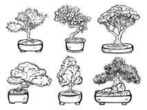 Reeks handdrawn geïsoleerde decoratieve Aziatische bonsaibomen Stock Afbeelding