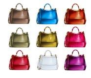 Reeks handtassen in verschillende texturen en kleuren vector illustratie