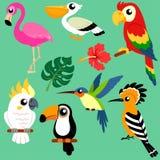 Reeks heldere exotische tropische vogels vector illustratie