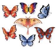 Reeks heldere exotische vlinders vector illustratie