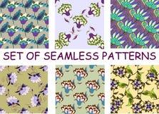 Reeks heldere multicolored bloemen naadloze patronen Royalty-vrije Stock Afbeeldingen