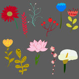 Reeks heldere vector mooie bloemen Stock Foto