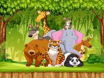 Reeks het wilddieren royalty-vrije illustratie