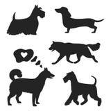 Reeks hondsilhouetten op de witte achtergrond stock illustratie
