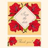 Reeks Kaarten met Amaryllis Floral Motifs Stock Foto's