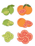 Reeks kalk en grapefruitplakken Royalty-vrije Stock Foto