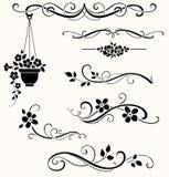 Reeks kalligrafische bloemenelementen Vector decoratieve takjes en bloemen Royalty-vrije Stock Afbeeldingen