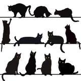 Reeks kattensilhouetten Stock Fotografie