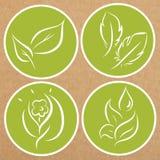 Reeks kentekens van het ecothema, pictogrammen, stickerlay-outs Royalty-vrije Stock Foto's