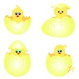 Reeks kippen met eieren Stock Afbeeldingen