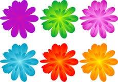 Reeks kleurenbloemen Stock Afbeelding