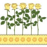 Reeks kleurenillustraties met gele rozen Geïsoleerde vectorvoorwerpen Royalty-vrije Stock Foto's