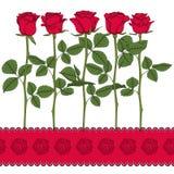 Reeks kleurenillustraties met rode rozen Geïsoleerde vectorvoorwerpen Royalty-vrije Stock Afbeeldingen