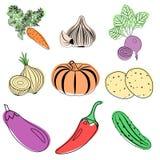 Reeks kleurrijke groentenpictogrammen Stock Fotografie