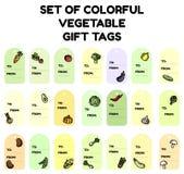 Reeks kleurrijke plantaardige giftmarkeringen Vlakke ontwerpinzameling van geïsoleerde veggie etiketten stock illustratie