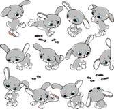 Reeks konijnen Royalty-vrije Stock Afbeeldingen