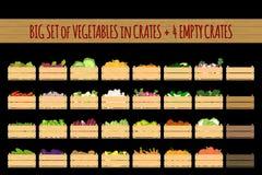 Reeks kratten met veggies royalty-vrije stock afbeelding