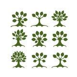 Reeks kunstbomen voor uw ontwerp Stock Foto's