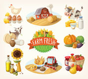 Reeks landbouwbedrijf verse illustraties Stock Foto's