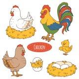 Reeks landbouwbedrijfdieren en voorwerpen, vectorfamiliekip Stock Fotografie