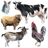 Reeks landbouwbedrijfdieren Waterverfillustratie op witte achtergrond stock illustratie